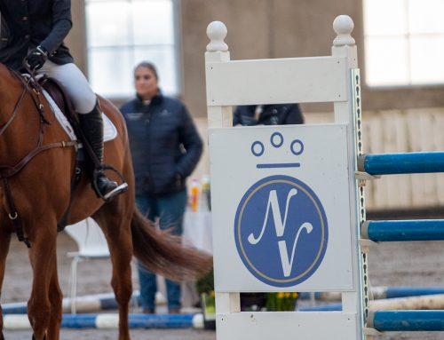 Hingstekåringen 2021: Disse skal vurdere hestene